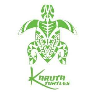 Karuta Turtles