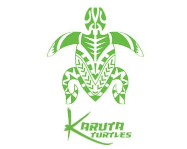 Karuta Turtles